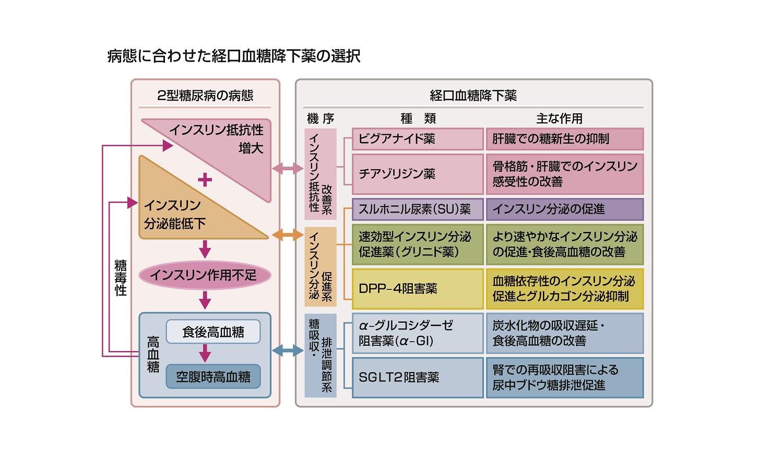 糖尿病治療ガイド2018-2019(抜粋)[9]