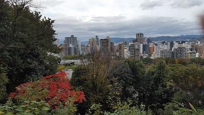 「職場のある比治山から広島市内を写したものです」:立川 佳美 先生